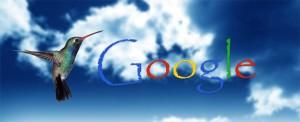 Google'ın Yeni Algoritması Hummingbird